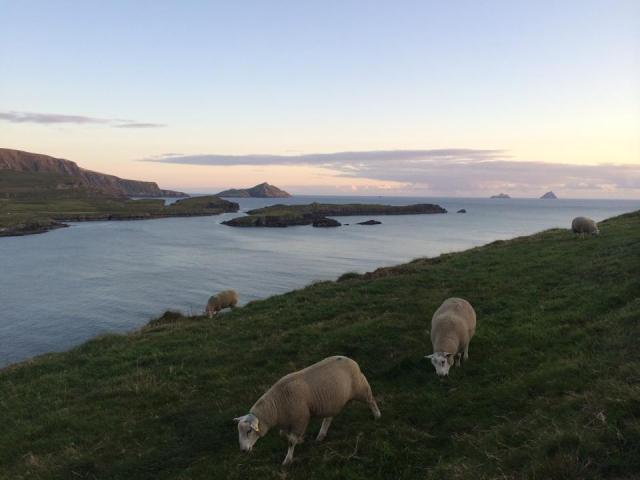 bray head valentia island kerry ireland